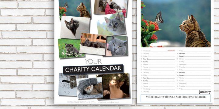 Charity Fundraising Calendar